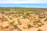 11920 Desert Turtle Lane - Photo 1