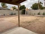 10113 Canyon Meadow Drive - Photo 23