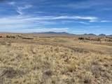 21 Cayuse Trail - Photo 5