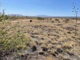 TBD Wild Antelope - Photo 10