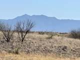 TBD Wild Antelope - Photo 2