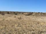 TBD Wild Antelope - Photo 3