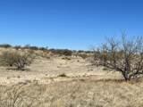 TBD Wild Antelope - Photo 4