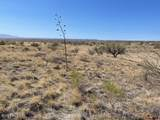 TBD Wild Antelope - Photo 6