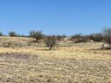 TBD Wild Antelope - Photo 7