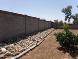 9870 Lucille Drive - Photo 44