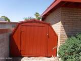 9870 Lucille Drive - Photo 48