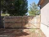 3194 Barrel Cactus Lane - Photo 11