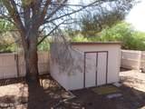 3194 Barrel Cactus Lane - Photo 26
