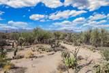 5345 Desert Falcon Lane - Photo 22