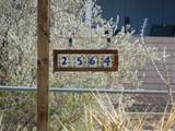 2564 Roadrunner Ridge - Photo 50