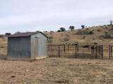 9800 Bar Boot Ranch Road - Photo 17