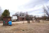 2624 Horny Toad Trail - Photo 14