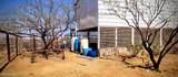 7150 Calle Dos - Photo 46