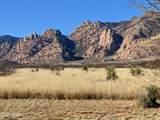1159 Wild Eagle Place - Photo 19