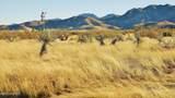 1159 Wild Eagle Place - Photo 20