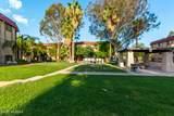461 Yucca Court - Photo 28