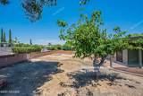 1510 San Carla - Photo 27