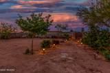 9879 Golden Cactus Trail - Photo 2