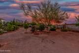 9879 Golden Cactus Trail - Photo 6