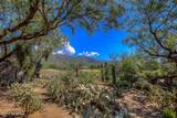 5100 Sabino Springs Drive - Photo 47