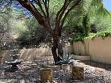 1591 Sonoran Desert Drive - Photo 8