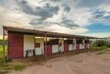 3640 Saguaro Shadows Drive - Photo 29