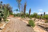 6921 Camino Verde - Photo 45