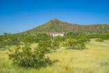 7350 Blanco Wash Trail - Photo 48