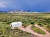 866 Mule Deer Trail - Photo 6