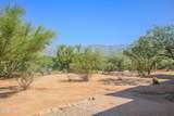 11991 Settlers Trail - Photo 9