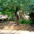 16 Calle Martina - Photo 4