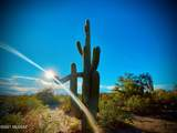 XX Amber Sunrise 40 Acres - Photo 1