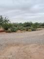 9065 Rincon Mesa Drive - Photo 14
