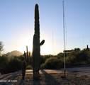 2246 San Juan Trail - Photo 14