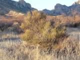 1021 Deer Road - Photo 12