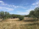 2330 Circulo De Anza - Photo 5