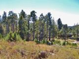 12717 Upper Loma Linda Road - Photo 10