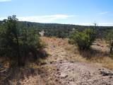 000c Coronado Trail - Photo 8