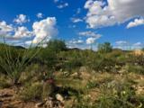 875 Tortolita Mountain Circle - Photo 4