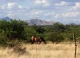 5664 De Vaca Circle - Photo 46