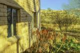 33105 Moyza Ranch Road - Photo 28