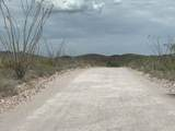 12435 Agua Verde Road - Photo 20