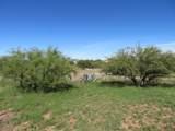 25390 Comanche Trail - Photo 29
