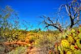 9150 Rincon Mesa Drive - Photo 4