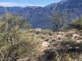 9650 Camino Del Plata - Photo 1