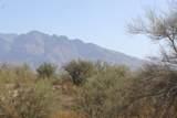 9650 Camino Del Plata - Photo 18