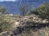 9650 Camino Del Plata - Photo 2