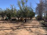 3356 Mesquite Road - Photo 34