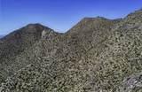 4320 Cush Canyon Loop - Photo 11